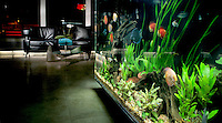 Commercial Salon with Aquarium Counter