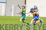Kerry's Julianne O'Keeffe gets her pass away in the All Ireland U16' s camogie championship at Kilmoyley on Sunday.