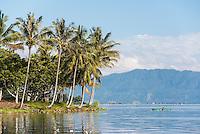 Fisherman and palm trees, Lake Toba (Danau Toba), North Sumatra, Indonesia
