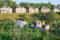 Garden allotments, Settle, North Yorkshire......John Eveson, Dinkling Green Farm, Whitewell, Clitheroe, Lancashire. BB7 3BN.01995 61280. 07973 482705.j.r.eveson@btinternet.com.www.johneveson.com