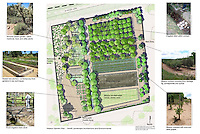Mission Garden Plan for San Agustin Mission Gardens, Tucson, AZ, 2013. A re-creation of the Spanish Colonial walled garden. Rebuilt on its original site and located west of downtown Tucson. The Garden features heirloom plants and living and Timeline Gardens, interpreting 4000 years of Tucson agriculture. Designed by Joy Lyndes, landscape architect.