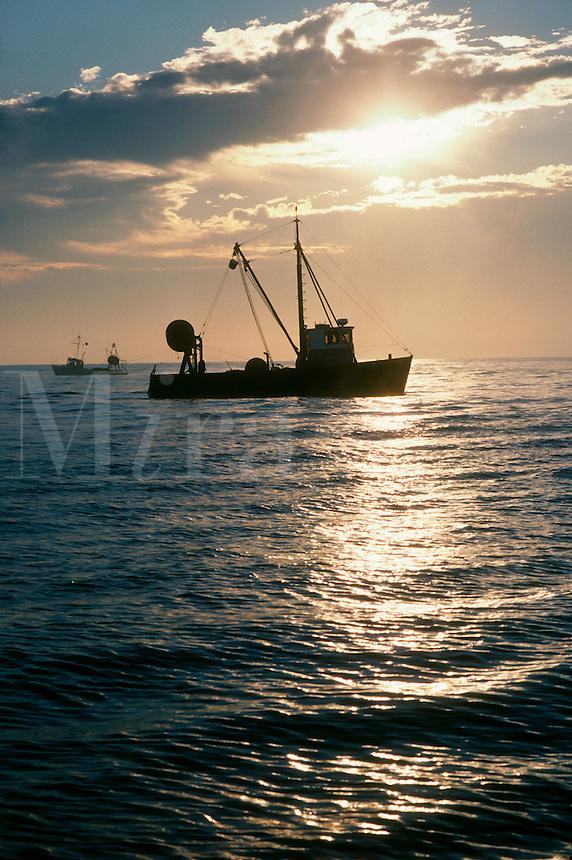 Fishing trawlers at dawn Gatilee RI