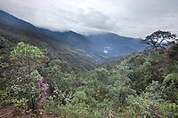 Habitat Destruction from Highway construction; Tapichalaca Reserve; Ecuador, Zamora Chichipe