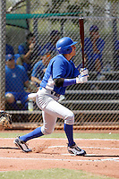 Ryan Flaherty - Chicago Cubs 2009 Instructional League. .Photo by:  Bill Mitchell/Four Seam Images..