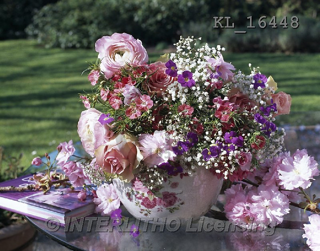 Interlitho, FLOWERS, BLUMEN, FLORES, photos+++++,flowers,pot, pink,KL16448,#F#
