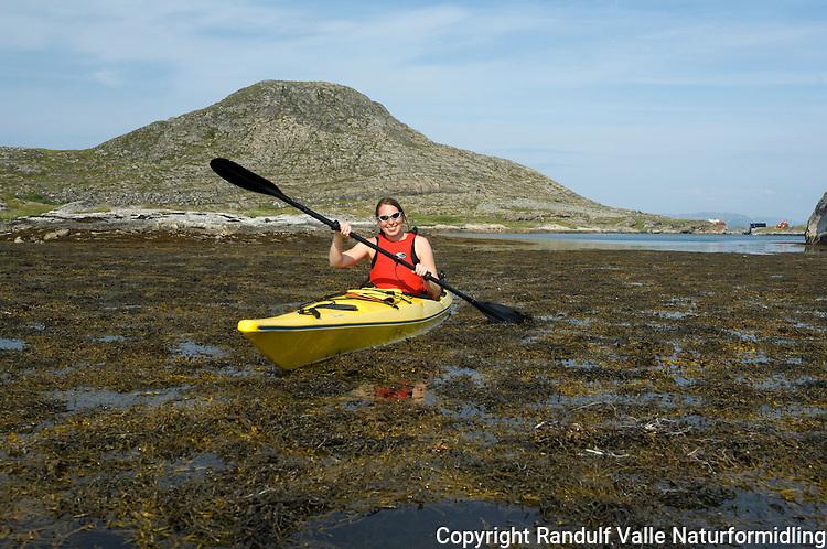 Dame padler kajakk gjennom tang ---- Girl kayaking on the Norwegian coast