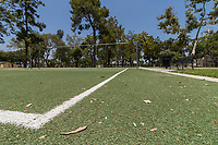 An ant's perspective of the volleyball courts at South Gate Park: wide angle and low to the ground shows the detail of the artificial turf, scattered with leaves.  A park bench sits to one side, and trees tower over the court.