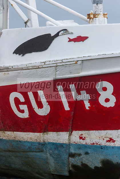 Royaume-Uni, îles Anglo-Normandes, île de Guernesey, Saint-Samson: Détail peinture d'un bateau/ représentant un cormoran/ United Kingdom, Channel Islands, Guernsey island, St-Samson: retail fishing boat painting