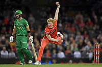 10th January 2020; Marvel Stadium, Melbourne, Victoria, Australia; Big Bash League Cricket, Melbourne Renegades versus Melbourne Stars; Will Sutherland of the Renegades bowls the ball - Editorial Use