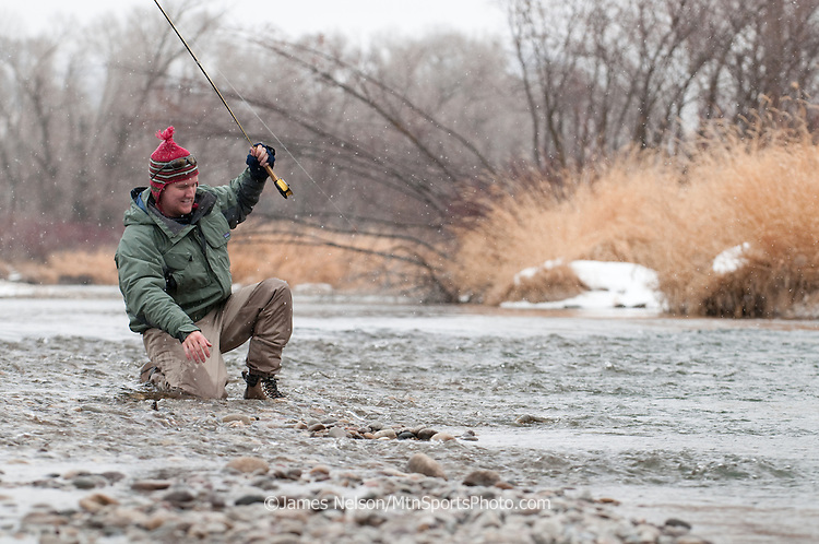 A fly fisherman brings a brown trout to hand as snow falls during a late autumn/early winter day on the South Fork of the Snake River, Idaho.