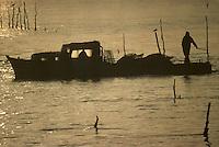 Europe/France/Aquitaine/33/Gironde/Bassin d'Arcachon: Bateau d'otréïculteur dans les parcs à huitres