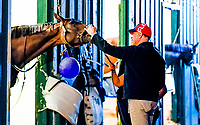 BALTIMORE, MD - MAY 17:  Part owner from Brooklyn Boyz Stables Vincent Viola checks in on his Kentucky Derby winner Always Dreaming at historic Stall 40 before he exercised in preparation for the Preakness Stakes this Saturday at Pimlico Race Course on May 17, 2017 in Baltimore, Maryland.(Photo by Scott Serio/Eclipse Sportswire/Getty Images)