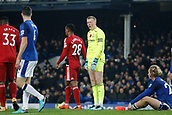 5th November 2017, Goodison Park, Liverpool, England; EPL Premier League Football, Everton versus Watford; Everton keeper Jordan Pickford complains to his defenders after Everton concede a penalty in added time