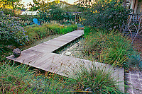 Wooden boardwalk path over pond as backyard rain garden water capture fed by gutters from roof in summer-dry California garden.