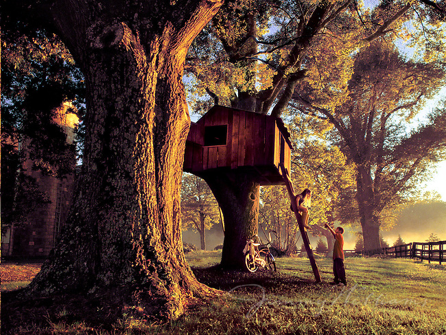 Two kids play on a treehouse on a rural farm in North Carolina