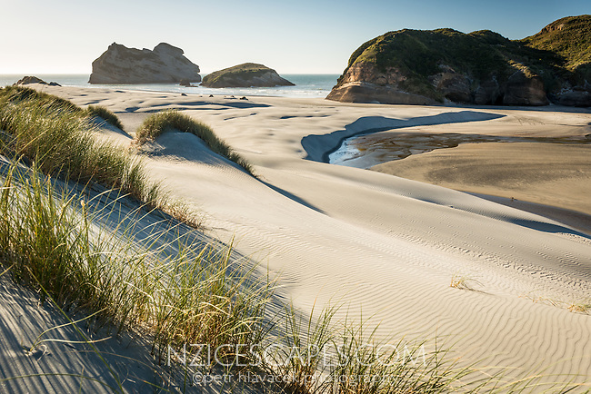 White sand dunes on Wharariki Beach on west coast of South Island, Nelson Region, South Island, New Zealand, NZ