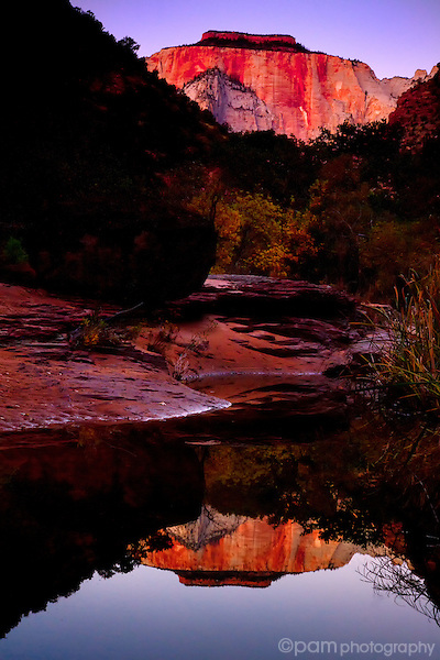 Morning reflection in Utah's Zion park