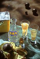 France/13/Bouches du Rhone: le Pastis à l'apéritif lors de la partie de boules - Verre de pastis et boules de pétanque