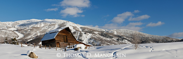 A sunny winter afternoon provides a perfect view of the Steamboat barn backdropped by the Steamboat ski area in Colorado.