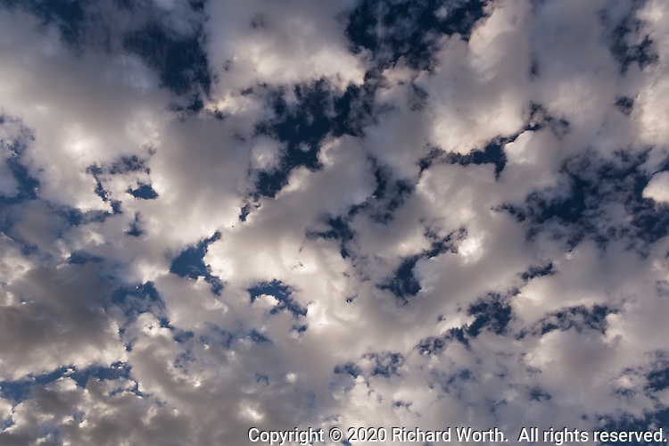 White and  gray clouds create abstract forms against a deep blue sky canvas.