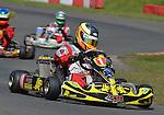 O Plate, Junior Max, Rowrah, James Singleton, Tonykart, Ogden, Coles Racing
