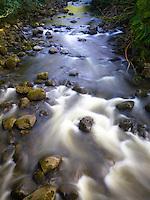 Kolekole Stream, as seen from a bridge, Hamakua Coast, Big Island.