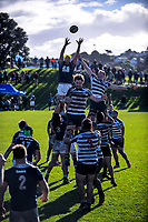 170708 Auckland Premier Club Rugby - University v College Rifles