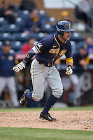 Brian Celsi (3) of the California Golden Bears hustles down the first base line during the game against the Duke Blue Devils at Durham Bulls Athletic Park on February 20, 2016 in Durham, North Carolina.  The Blue Devils defeated the Golden Bears 6-5 in 10 innings.  (Brian Westerholt/Four Seam Images)