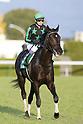 Horse Racing: Radio Nikkei Hai Kyoto Nisai Stakes at Kyoto Racecourse