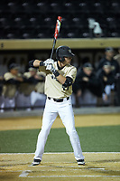 Bruce Steel (17) of the Wake Forest Demon Deacons at bat against the Liberty Flames at David F. Couch Ballpark on April 25, 2018 in  Winston-Salem, North Carolina.  The Demon Deacons defeated the Flames 8-7.  (Brian Westerholt/Four Seam Images)