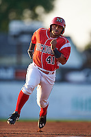 Batavia Muckdogs outfielder Travis Brewster (41) running the bases during a game against the Williamsport Crosscutters on July 15, 2015 at Dwyer Stadium in Batavia, New York.  Williamsport defeated Batavia 6-5.  (Mike Janes/Four Seam Images)