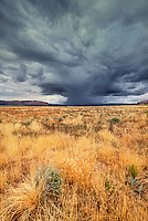 792800086 a violent summer monsoon thunderstorm cell forms up over the open high desert of southern utah