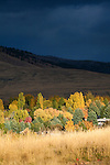 Fall color in the Missoula Valley and a dark stormy sky