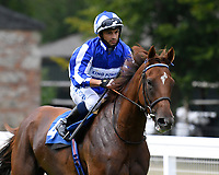 Queen Power ridden by Silvestre De Sousa goes down to the start  of The British Stallion Studs EBF Upavon Fillies' Stakes  during Horse Racing at Salisbury Racecourse on 13th August 2020