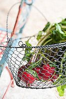 Close up of a basket made with wire mesh filled with brigth red beets sourced locally