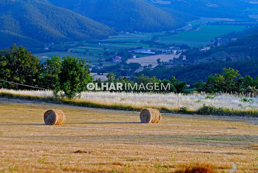 Fardos de feno no campo em Citta diCastello. Umbria. Itália. 2006. Foto de Luciana Whitaker.