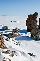Matt Hayashida runs on the Bering Sea ice as he leaves the Elim checkpoint during the 2010 Iditarod