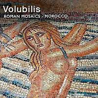 MuseoPics - Volubilis Roman Mosaics Artefacts - Morocco -