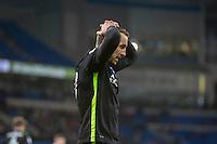 Cardiff City v Brighton & Hove Albion - 03.12.2016