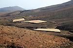 Plastic fleece enclosed spaces used for agriculture, near Cardon, Fuerteventura, Canary Islands, Spain