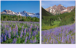 Find a great mountain scene, then add some beautiful foreground. <br />