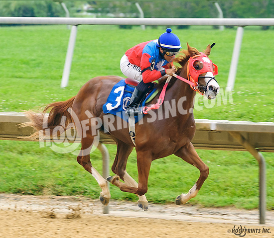 Choice Prospect winning at Delaware Park on 6/16/16