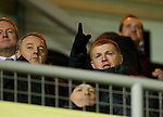 Neil Lennon in the stand