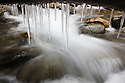 Canada,Yukon; Creek with icicles on branches, close-up, fall