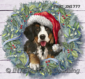 Marcello, CHRISTMAS ANIMALS, WEIHNACHTEN TIERE, NAVIDAD ANIMALES, paintings+++++,ITMCXM1777,#XA# ,Christmas wreath ,dog