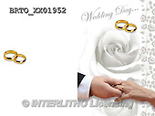 Alfredo, WEDDING, HOCHZEIT, BODA, photos+++++,BRTOXX01952,#W#