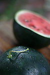 A home grown Black Tail Mountain watermelon for DIG or Home Front,   September 2, 2007.   (ELLEN JASKOL/ROCKY MOUNTAIN NEWS).***