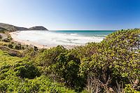 View of surf at Makorori beach, North of Gisborne, Eastland NZ