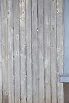 20161007 Cortney barn wood