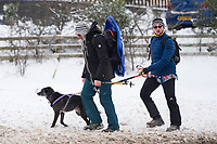 Pictured: Dog Walkers in the snow at Libanus, in Brecon, Wales, UK. Friday 01 February 2019<br /> Re: Heavy snow and freezing temperatures affecting parts of the UK.